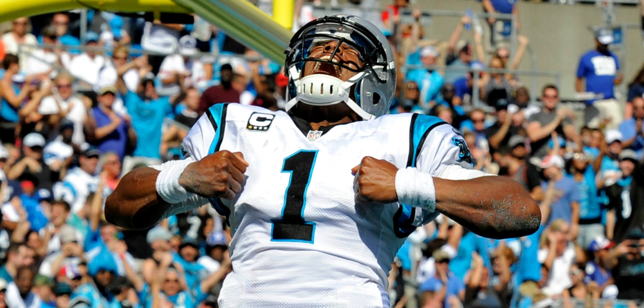 Courtesy of USA Today: Newton's importance to the Panthers cannot be overstated.