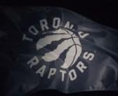 Raptors Introduce New Logo, Nets Question its Originality