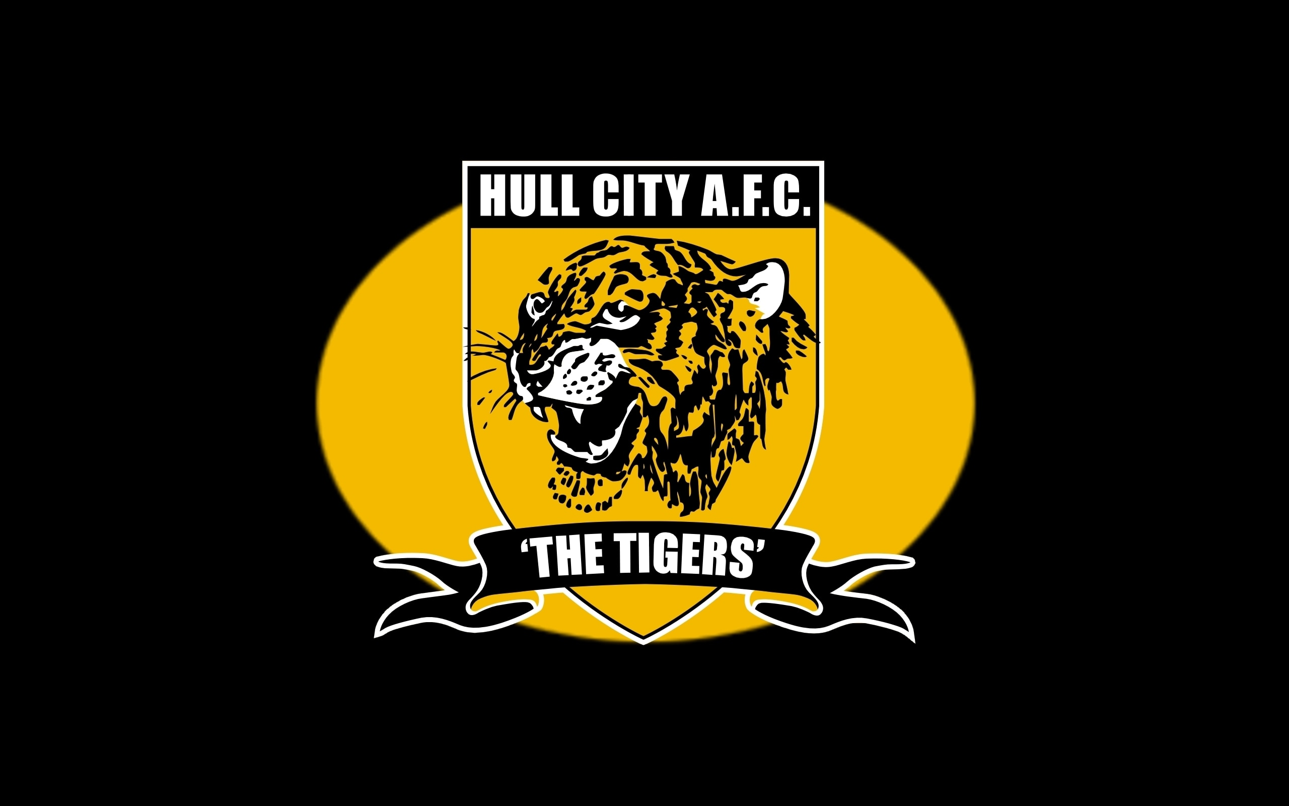 Suprise Package! Hull City Remain In Shop Window