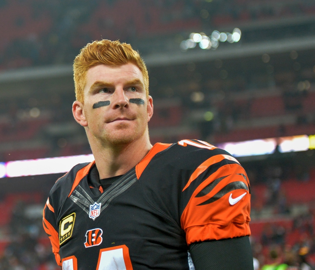 Image result for andy dalton billy idol