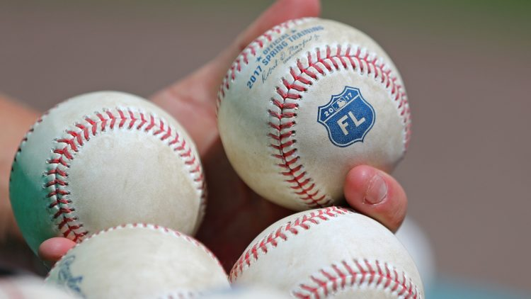 Mar 17, 2017; Fort Myers, FL, USA; A view of the Grapefruit League logo on official Rawlings baseball at JetBlue Park. The Astros won 6-2. Mandatory Credit: Aaron Doster-USA TODAY Sports, Khalil Lee