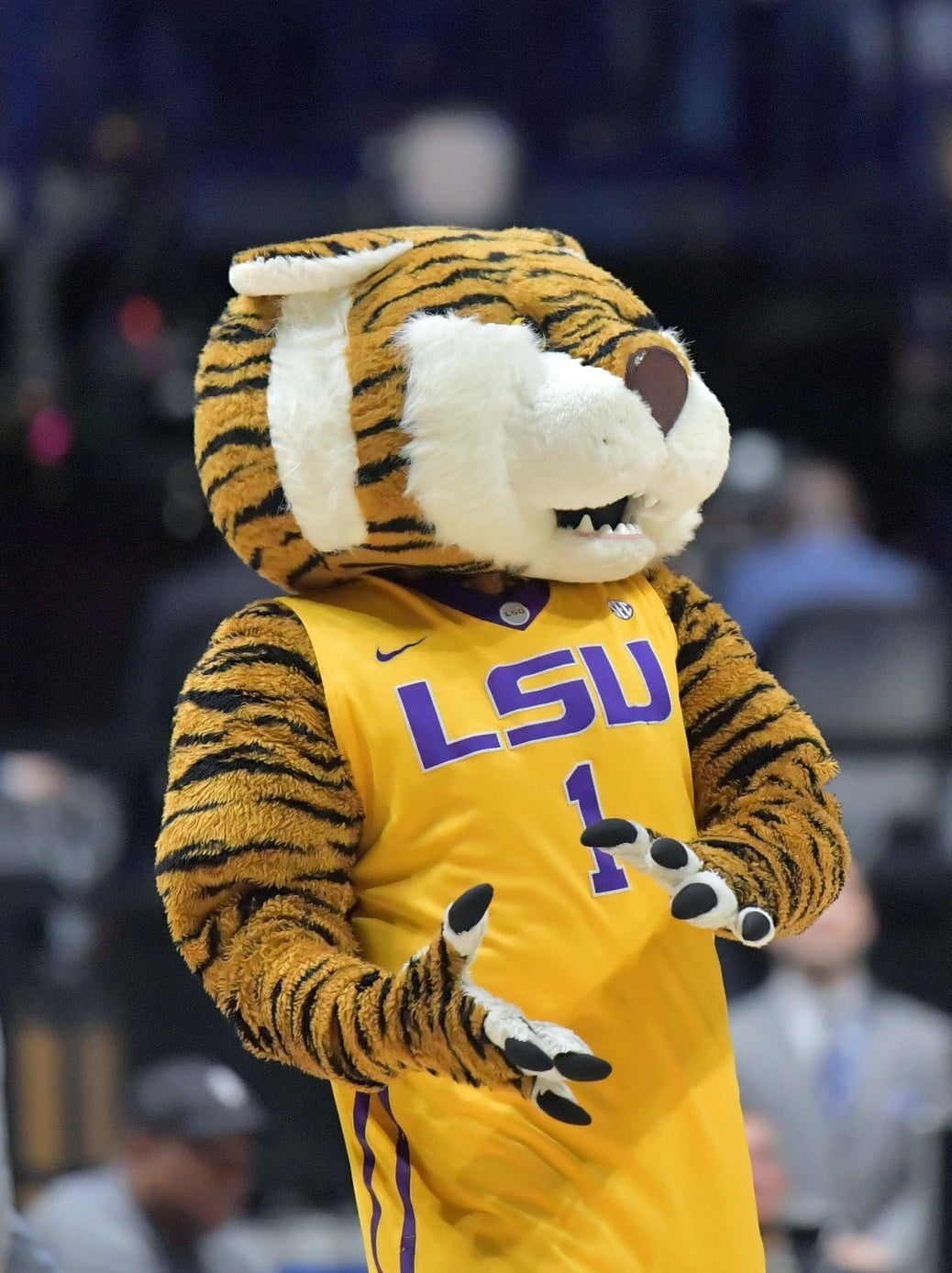 "There's a petition going around to change the ""racist"" LSU Tigers mascot. Really."