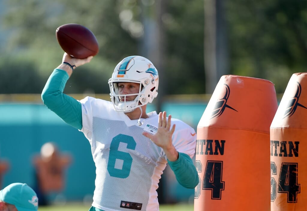 Miami Dolphins Jay Cutler NFL