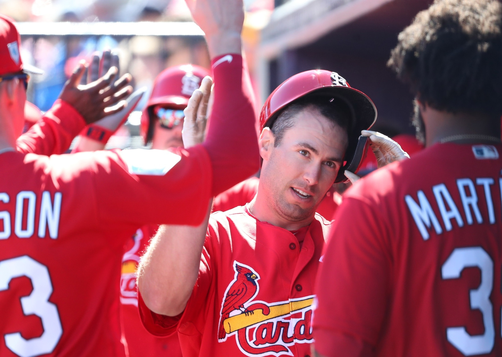 2019 St  Louis Cardinals: How High Can These Redbirds Soar?