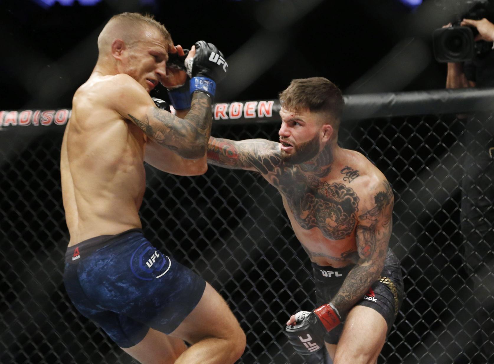 Cody  Assuncao 250 UFC preview: Raphael odds Garbrandt vs.