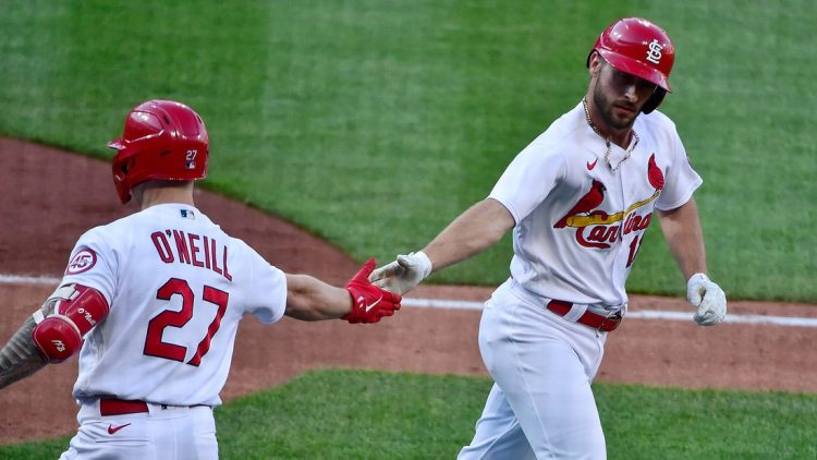May 5, 2021; St. Louis, Missouri, USA;  St. Louis Cardinals shortstop Paul DeJong (11) is congratulated by left fielder Tyler O'Neill (27) after hitting a two run home run during the fifth inning against the New York Mets in game one of a doubleheader at Busch Stadium. Mandatory Credit: Jeff Curry-USA TODAY Sports
