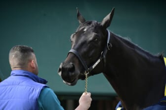 May 12, 2021; Baltimore, MD, USA;  Medina Spirit stands out side the stakes barn after the morning work out at Pimlico Race Course. Mandatory Credit: Tommy Gilligan-USA TODAY Sports