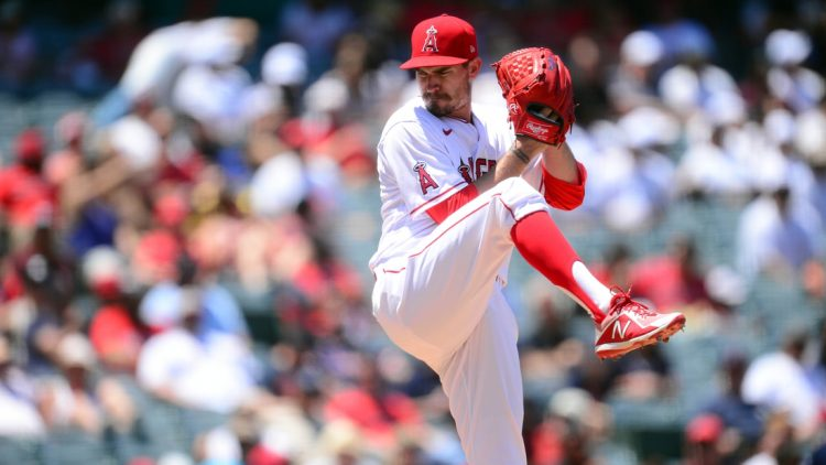 Jul 7, 2021; Anaheim, California, USA; Los Angeles Angels starting pitcher Andrew Heaney (28) throws against the Boston Red Sox during the third inning at Angel Stadium. Mandatory Credit: Gary A. Vasquez-USA TODAY Sports