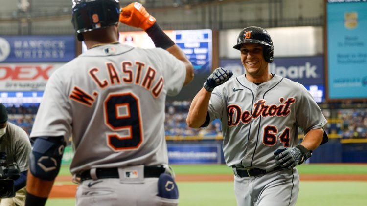 Sep 18, 2021; St. Petersburg, Florida, USA; Detroit Tigers catcher Dustin Garneau (64) is congratulated by shortstop Willi Castro (9) after hitting a home run in the second inning against the Tampa Bay Rays at Tropicana Field. Mandatory Credit: Nathan Ray Seebeck-USA TODAY Sports